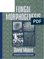 Fungal Morphogenesis.pdf