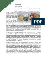 166767072-Orixas-e-doctrina-da-Nacao-Ijexa
