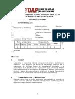 SILABOS DESARROLLO  DE TESIS