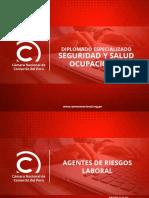SSO - MODULO 4 - AGENTES DE RIESGO
