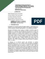 practicas de quimica inorganica 2DOA 2019-2 (1) (1).docx