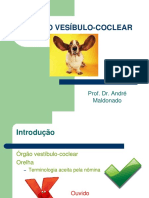 12 Orelha.pdf