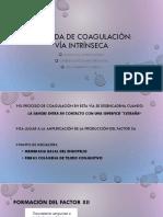 Cascada de coagulación.pptx