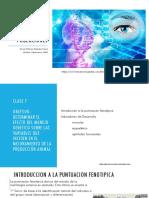 Puntuación Fenotipica en Genética ANIMAL