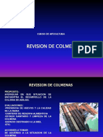 12_REVISION DE COLMENAS.ppt