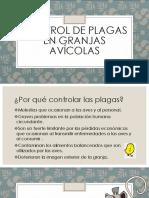 Control de plagas en granjas avícolas 2.pptx