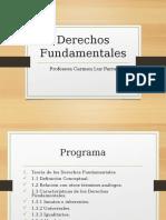 323439394-Derechos-Fundamentales-UNAB.pdf