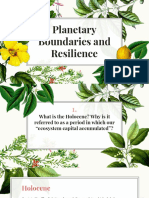 planetary boundaries and resilience