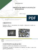 Apresentacao_Seminário.pptx