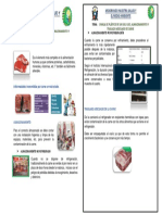 AFICHE carne.pdf