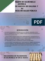 Transmisión deSalmonella entérica.pptx