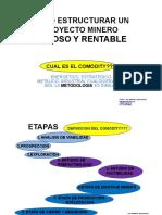 Estructura Proyecto Minero.pdf