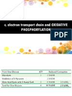 OXIDATIVE-PHOSPHORYLATION-AND-ELECTRON-TRANSPORT-CHAIN-for-students-2017.pptx