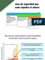 Mecanismos de seguridad que normalmente impiden el edema.pptx