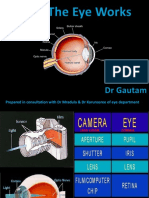 eye functions.ppt