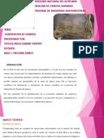 378127006-Elaboracion-de-Charqui