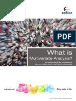 white-paper-MVA.pdf