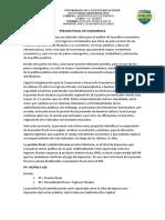 PRESION FISCAL EN SUDAMERICA.docx