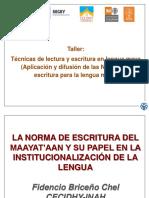02. TALLER 1. NORMA MAYA E INSTITUCIONALIZACION.CECIDHY .FBCHEL.2019 (1).pptx