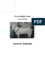 Goat Fattening Farm