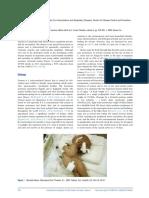 2.print 1-6.pdf