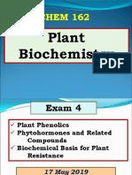 Plant Hormones.pdf