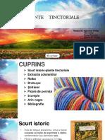 Plante-tinctoriale-511-tppa.pptx