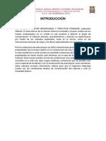 proctor.docx