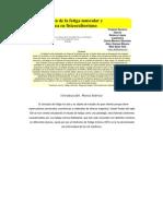 Investigación de la fatiga muscular y psicológica en fisicoculturismo