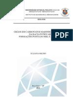 GRÃOS EM CARBONATOS MARINHOS CRETÁCICOS DA BACIA POTIGUAR_ FORMAÇÕES PONTA DO MEL E JANDAÍRA.pdf