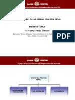FLUJOGRAMA DEL NUEVO CODIGO PROCESAL PENAL