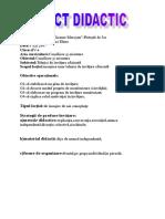 proiect_clasaaiv_a.doc