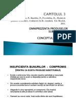 Management_Capitolul III_prezentare