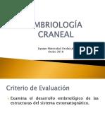 Clase 2 Embriologia craneal