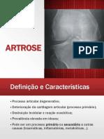 Artrose - Luís Rocha e Steven Sá.pptx