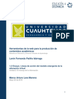 LeninFernandoPatiño-Tarea 2.3 ensayo lineas de accion.pdf
