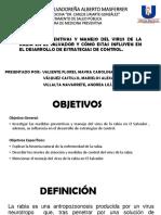 RABIA_preventiva.pptx