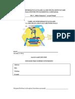 tabel de performanta.docx