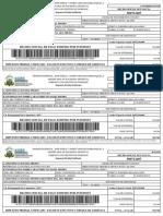 PDFLiquidacion impuesto predial blla.pdf