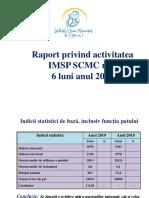 Raport_pe_activitatea___2019-_6_luni_.pdf