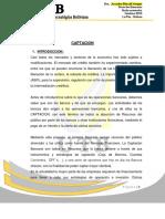 captacion - informe.docx