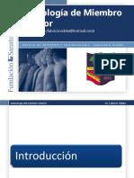 104235359 Semiologia de Miembro Inferior Dr Fabrizio Videla de La Fundacion Sanatorio Guemes