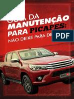 Ebook_GuiaManutencaoPicape_.pdf