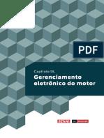 Capitulo13_Gerenciamento_Eletronico_Motor