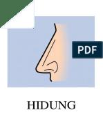 HIDUNG.docx