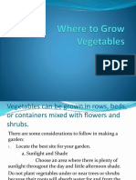 Where to Grow Vegetables.pptx