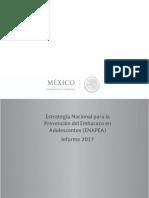 Informe_Ejecutivo_2017_ENAPEA.pdf