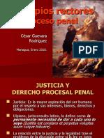 01-Principios Rectores Proceso Penal.ppt