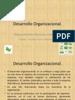 karolina_nunez-semana1-diagnosticoy desarrolloorganizacional.