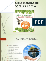 PRESENTACION  AMBIENTAL.pptx